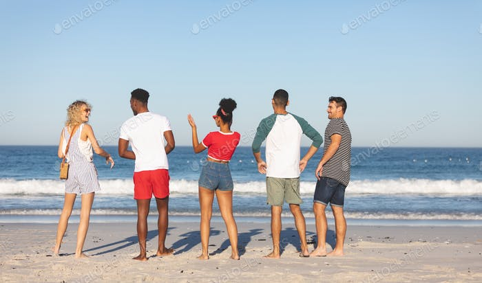 Rear view of diverse friends walking together on the beach