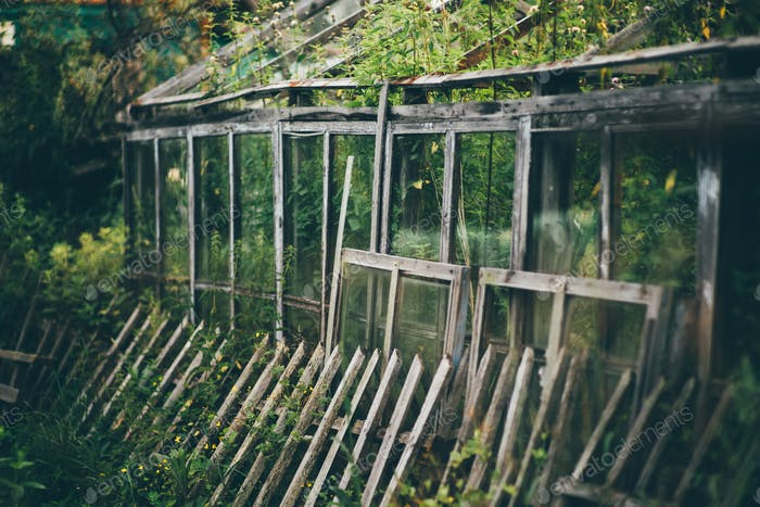 Desolate greenhouse with a fencing