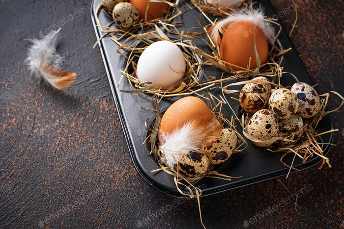 Fresh raw chicken and quail eggs in sieve