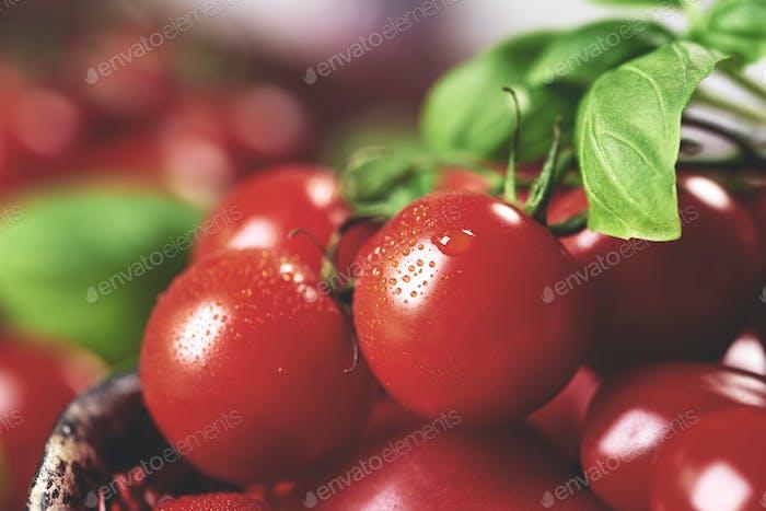 Owoce39