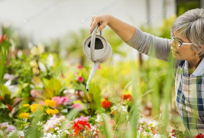 Reife Frau Bewässerung Blumen