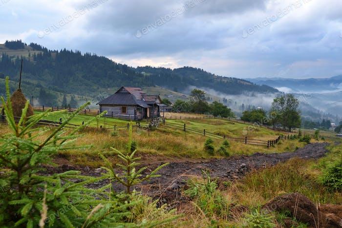 Wunderschöne Berglandschaft mit Nebel und bunten Kräutern. Authumn