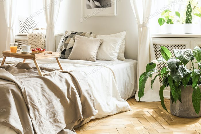 Breakfast tray on a comfy bed with beige sheets and pillows in a