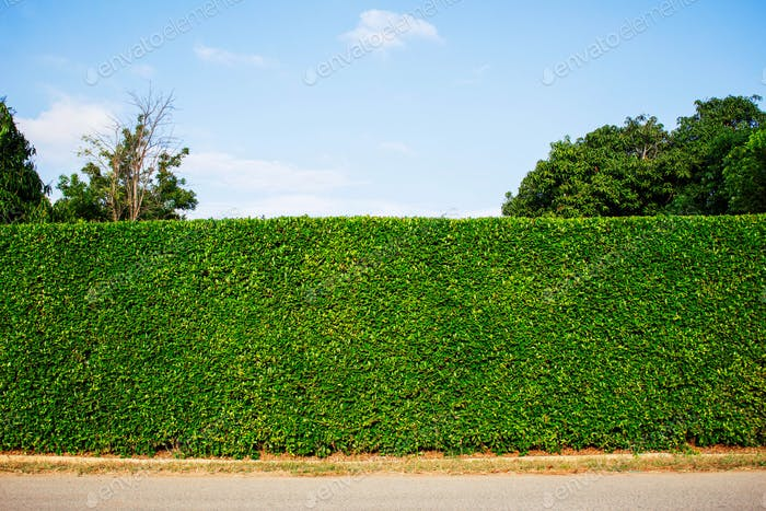 ornamental fence at sky
