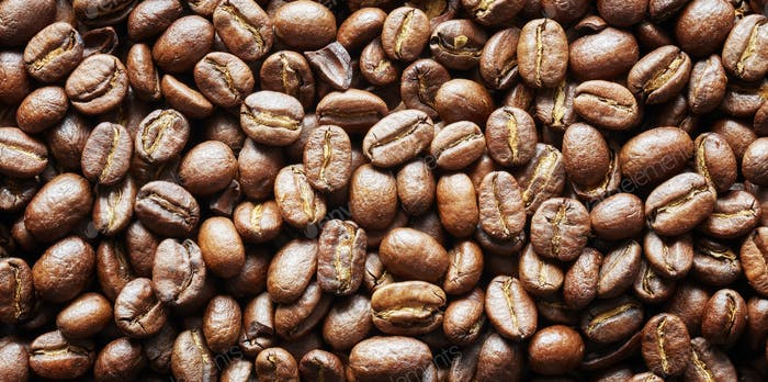 Roasted coffee beans, panoramic background.