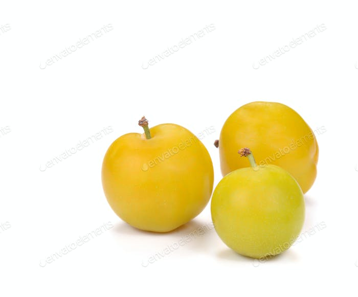 Yellow Ripe plum on white background.