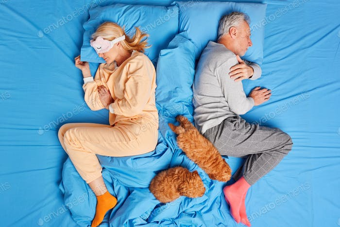 Photo of relaxed mature woman and man have deep sleep in comfortable bed with puppies rest at mornin