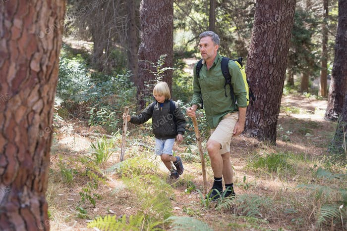 Father and son hiking in forest