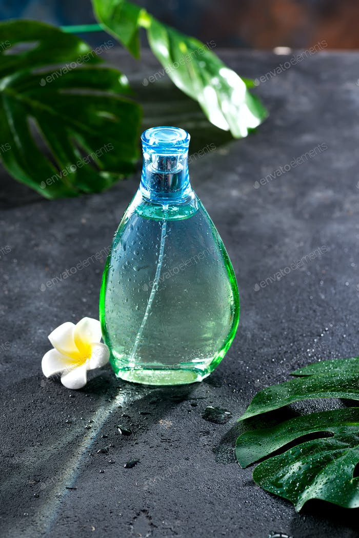 Women's perfume in beautiful bottle with flower and leaves on a black concrete background with
