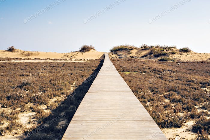 Concept of ambition, achievement and long way - wooden beach boardwalk path