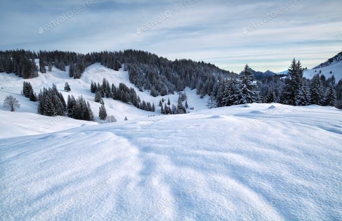 dawn in snowy mountains
