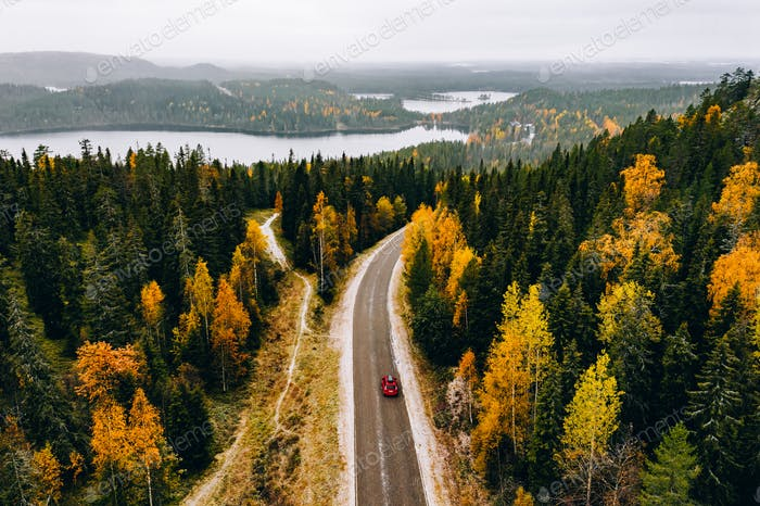 Aerial view of first snowy autumn color forest in the mountains