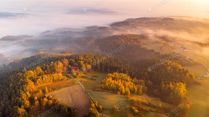 Colorful Sunrise over Forest and Countryside in Poland. Aerial D