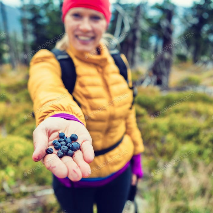 Woman hand giving blueberries in forest