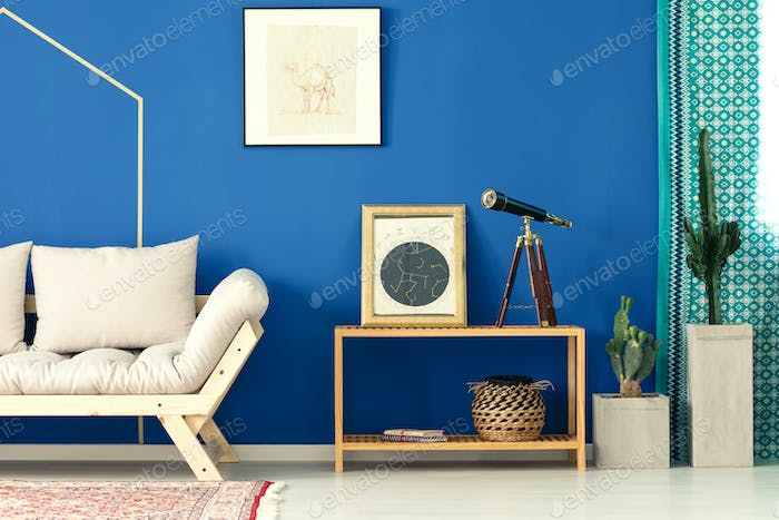 Blue living room with cactus