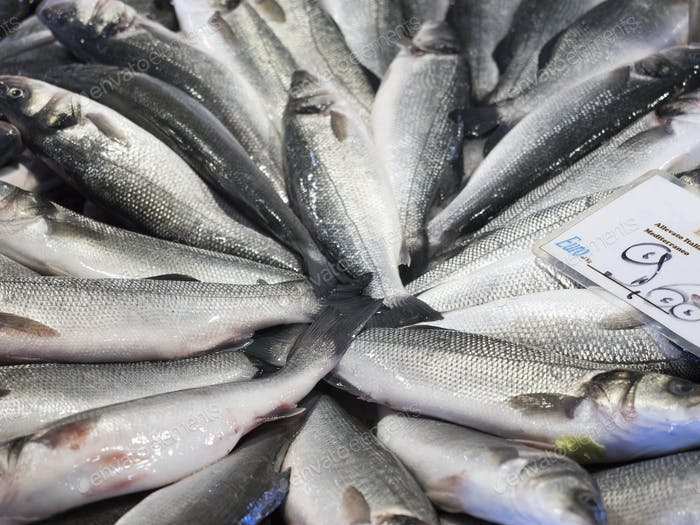 Close up of a market stall and fresh produce. Fresh fish, catch of the day and a price label.