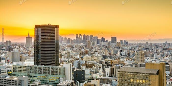 Tokyo Skyline and Fuji Mountain