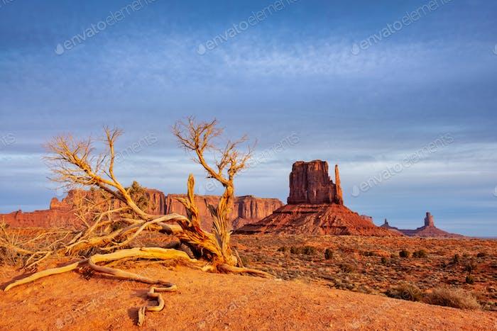 Monument Tal Landschaft Blick mit trockenem Baum und dramatisch Himmel, Arizona