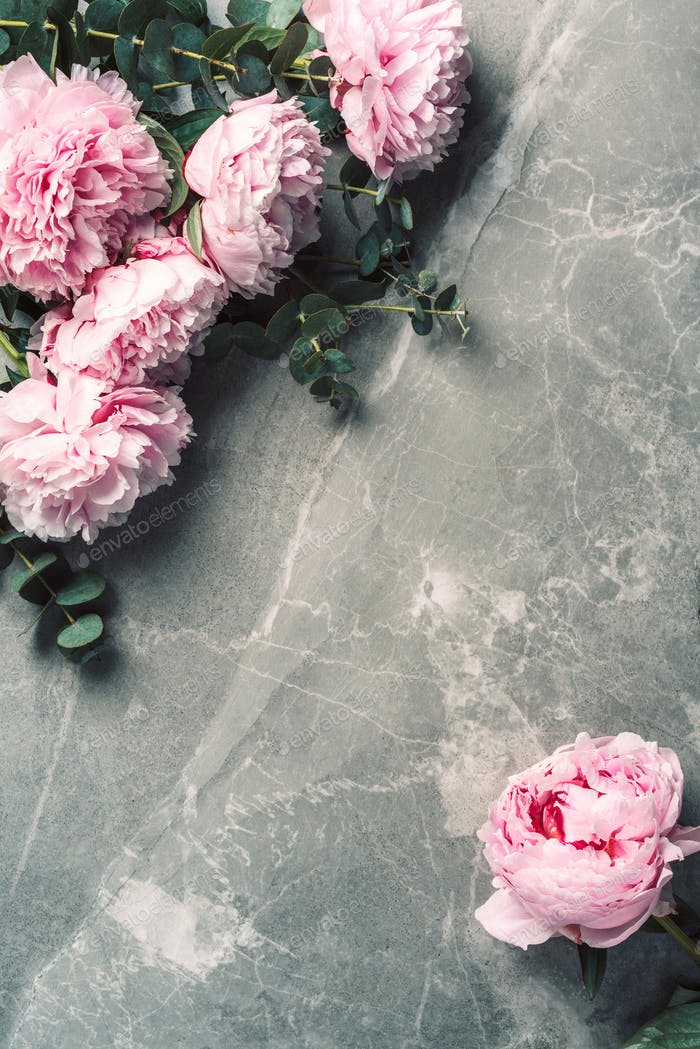 Frame pattern of pink peonies, eucalyptus flowers on marble background. Flat lay, top view. Floral