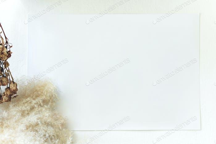 Espacio de copia de tarjeta en blanco