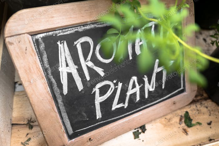 "Small blackboard with ""Aromatic Plant"" inscription"