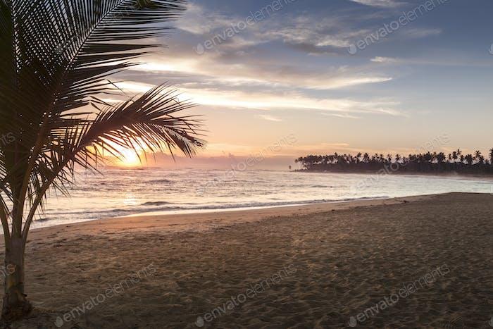 Tropical Beach Sunrise in Punta Cana  Dominican Republic