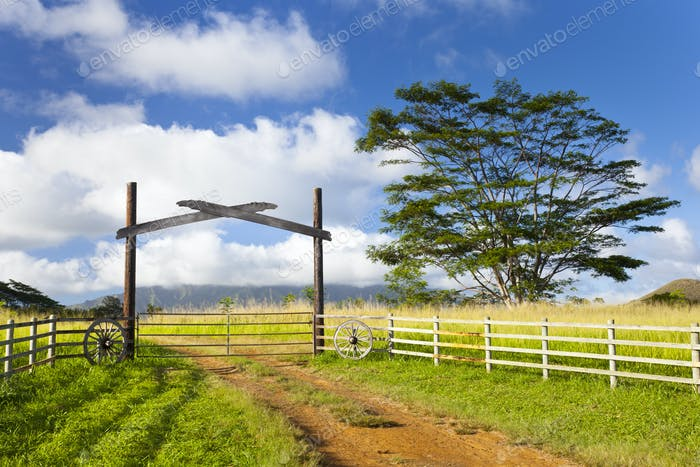 Kauai Farm Landscape, Hawaii