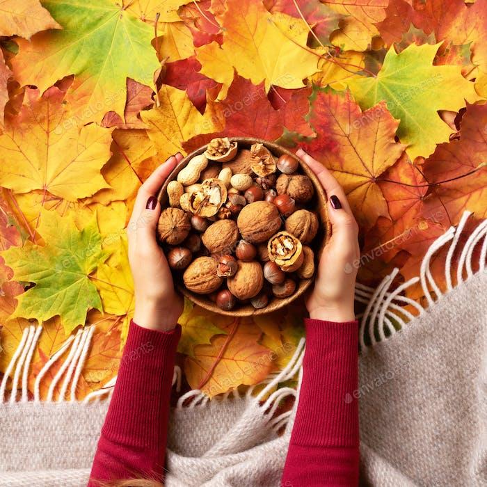 Herbst flach lag. Frau Hände halten Holzschale mit gemischten Nüssen. Gesundes Essen und Snack. Vegan