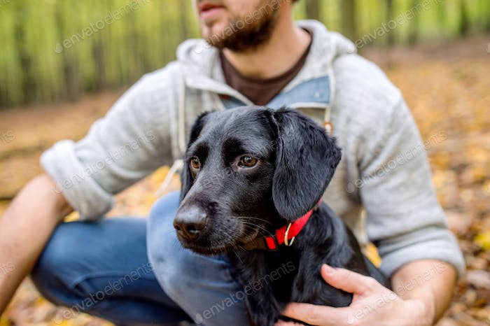 Man on a walk with black dog in forest