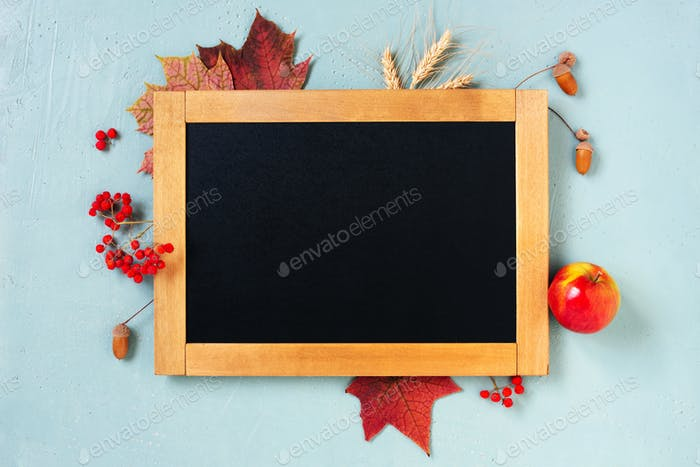 Empty Chalkboard Decorated with Autumn Leaves and Berries