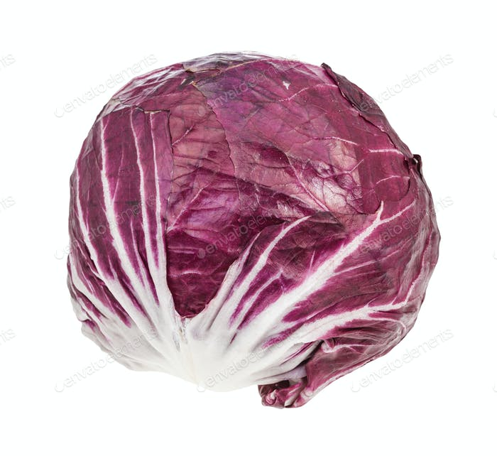 head of Radicchio (Italian leaf chicory) isolated