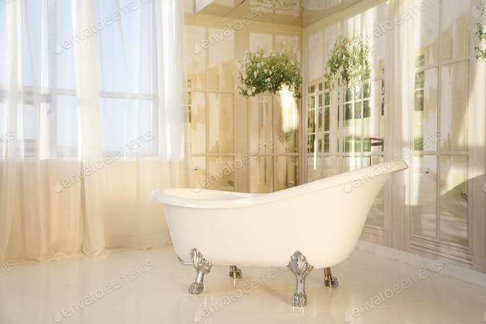 bathroom interior with free-standing bathtub