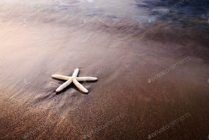 Wunderschöne mediterrane Meereslandschaft mit goldenem Sand