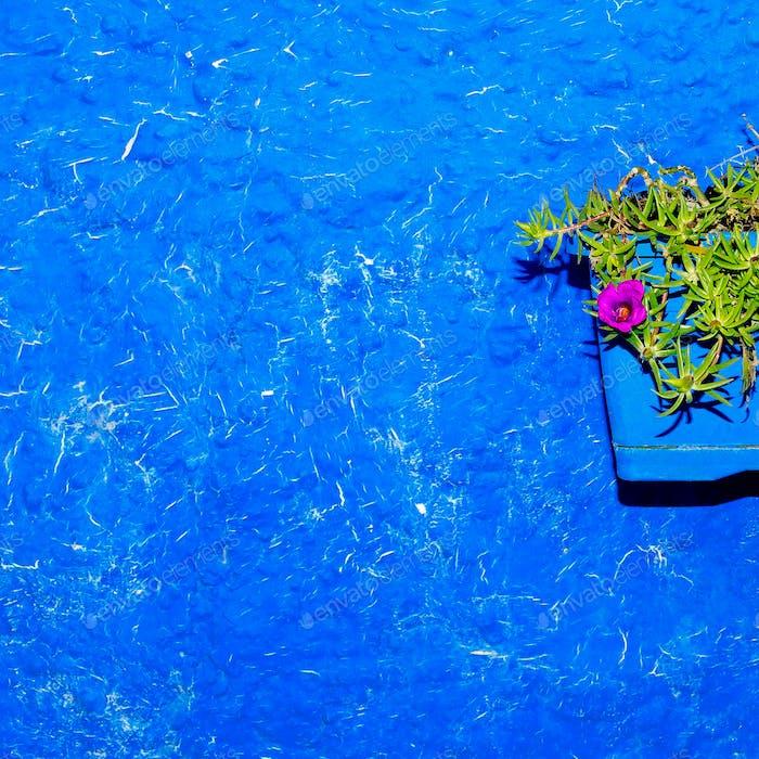 Flower in a pot Half art minimal design