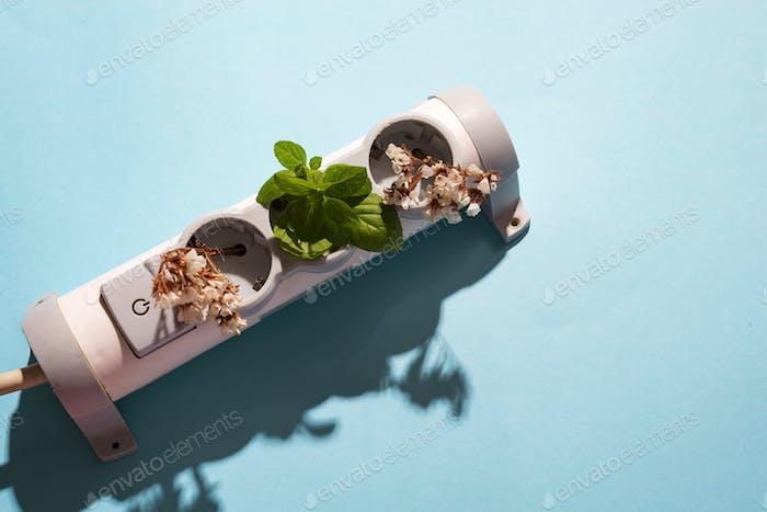 elektronisch Kabelstecker mit grünen Minze und Blumen auf blauem Hintergrund. Freundliches grünes Wohnen. Erde