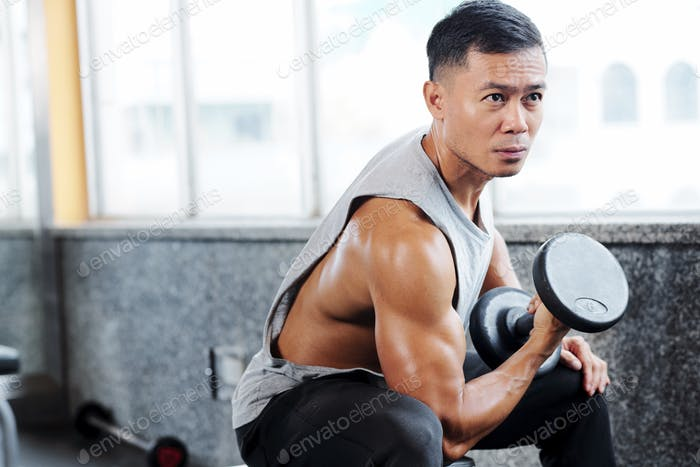 Sporty man having arm day in gym