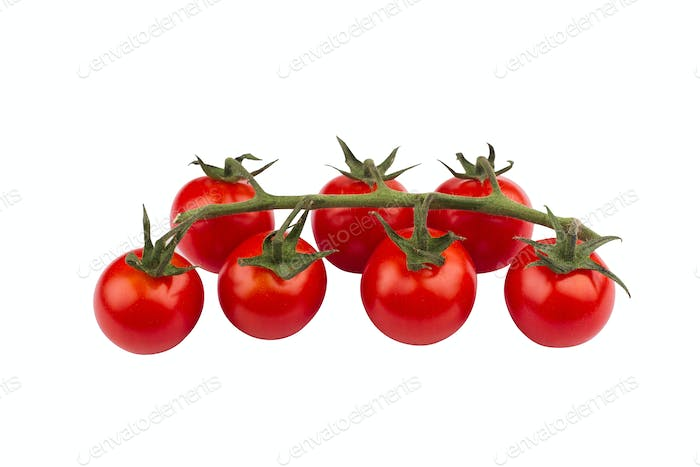 cherry tomatoes on green branch