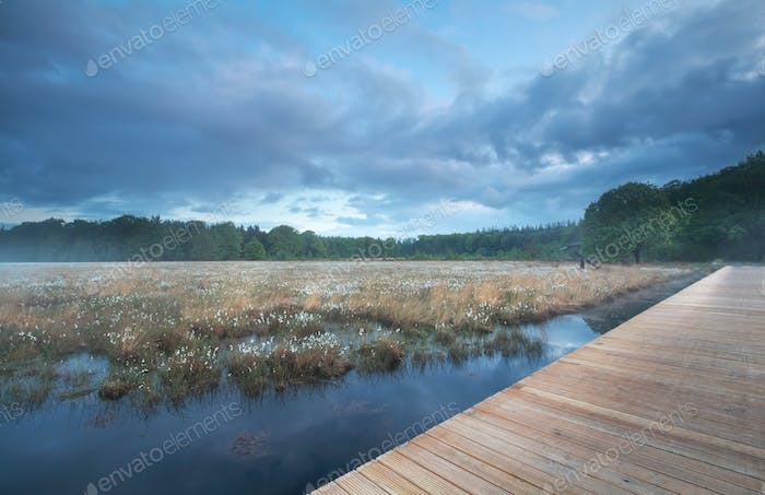 wooden path on swamp during misty morning