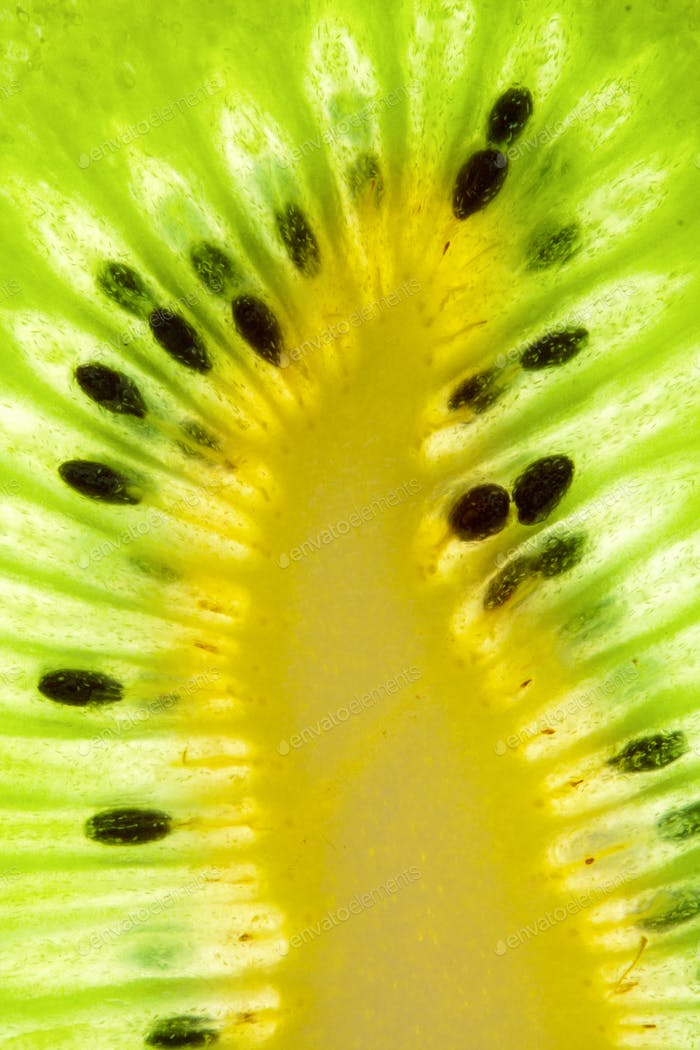 Ripe kiwi slice