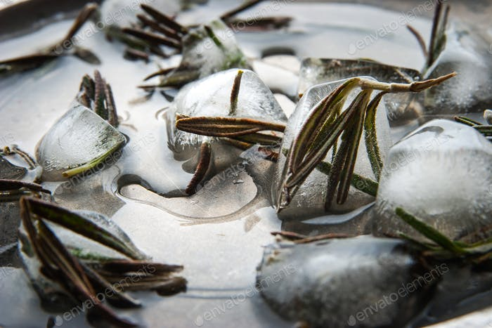 Ice cubes with rosemary on the metal plate