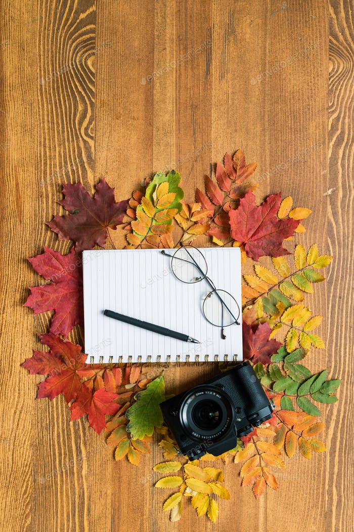 Top view of photocamera, copybook with pen and eyeglasses surrounded by leaves