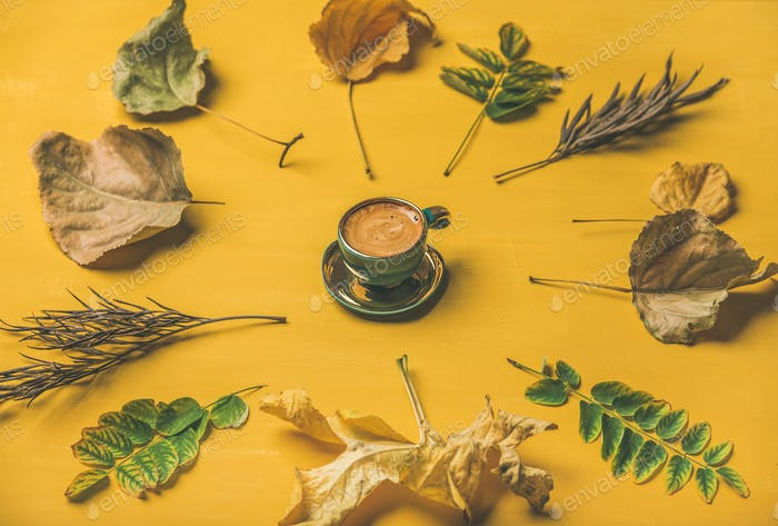 Flat-lay of espresso cup surrounded by dried fallen tree leaves