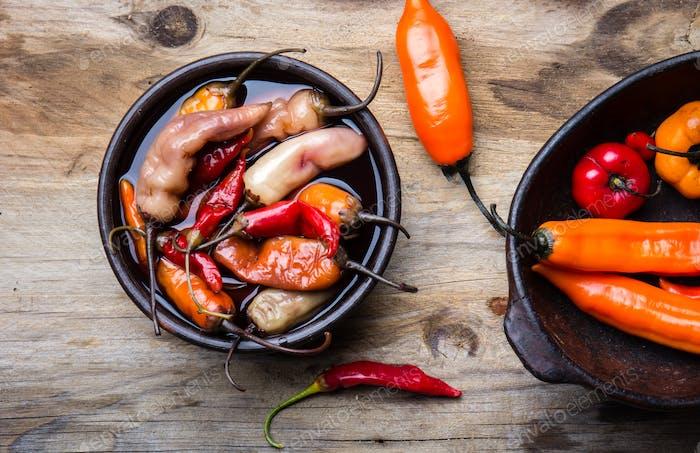 Latin American escabeche - fermented chili pepper. Spicy marinated chili