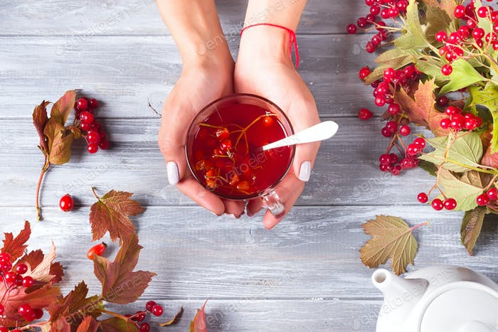 In a female hand a cup of vitamin berry tea on a gray wooden background with copy space. Top view