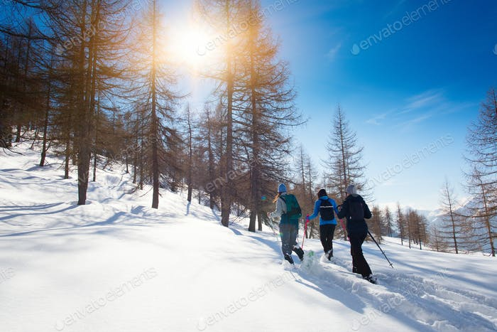 Walk in the fresh snow with the snowshoes