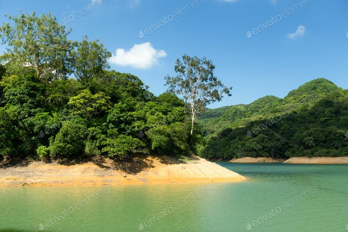 Reservoir and tropical forest