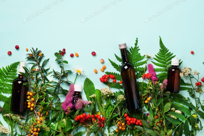 Essential oils in dark glass bottles and healing flowers, herbs on blue background. Holistic