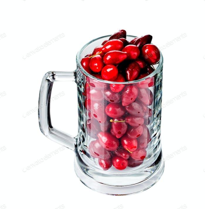 Riped dogwood berries in beer mug.