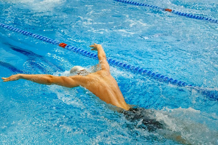 back male athlete swim butterfly