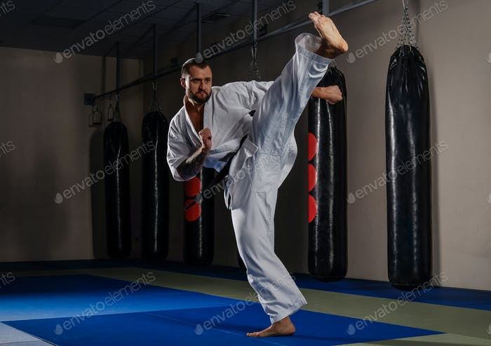 Karate fighter practicing martial arts in a fight club